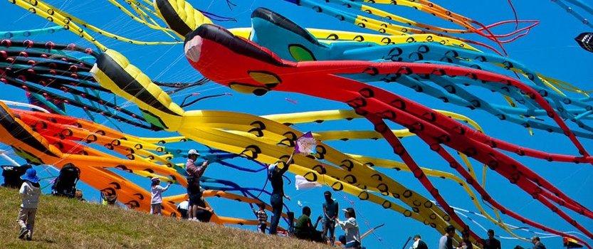 V Фестиваль воздушных змеев Летать легко