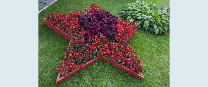 Флористическая выставка Цветочный залп Победы