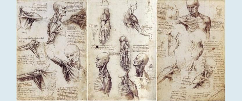 Фильм-выставка Леонардо. История гения