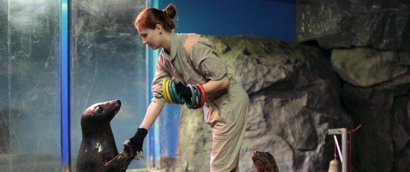 Международный день защиты бельков в Океанариуме