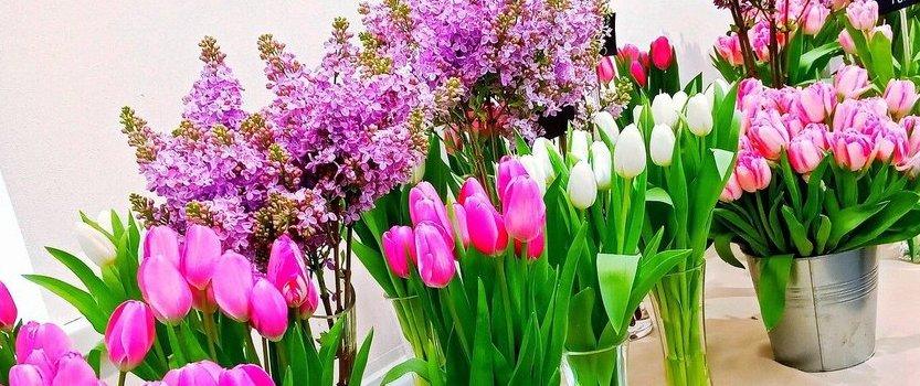 Весенняя выставка тюльпанов